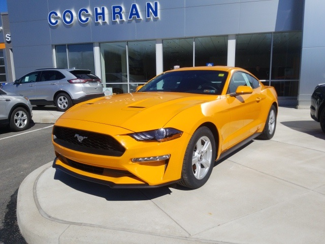 Ford Mustang Ecoboost >> New 2019 Ford Mustang Ecoboost 2d Coupe In Natrona Heights Af190007